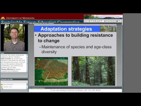 Silviculture in the 21st Century