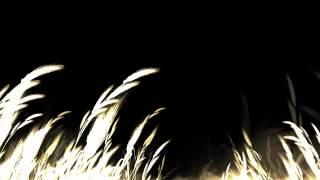 Corona - The rhythm of the night (AngelNervo remix)