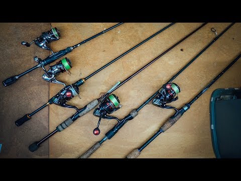 My Light Rod & Reel Setups