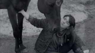 Du bist kein Pferd, Du bist (M)ein Held || Bad-News