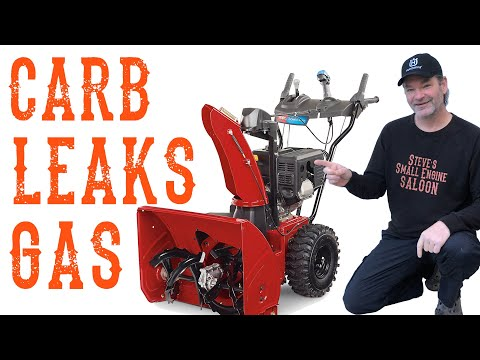 How To Fix Your Leaking Snow Blower Carb – Briggs Or Tecumseh - Video