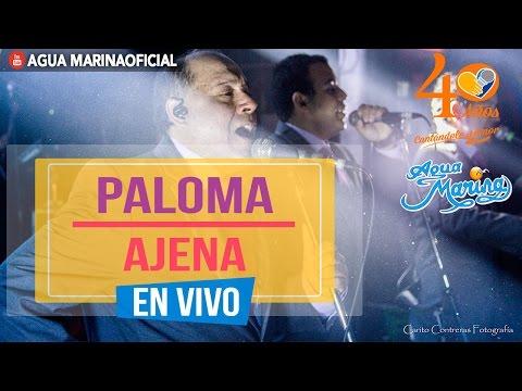 Agua Marina - Paloma Ajena (En Vivo)