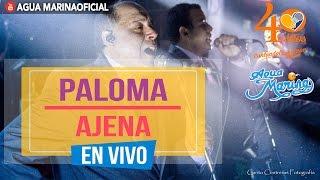 Agua Marina - Paloma Ajena (En Vivo OFICIAL)