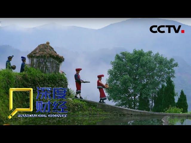 《深度财经》 20190119 改革再出发:美丽乡村日记| CCTV财经