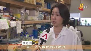 研究员:发现骨痛热症病毒可变形 有助制定针对性治疗