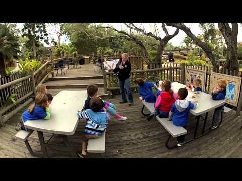 Zoo Camp in 60 seconds - SANTA BARBARA ZOO