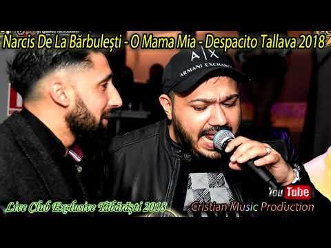 Narcis de la Bărbulești - O Mama Mia - Despacito Tallava 2018 (Live Club Exclusive Tăbărăști)
