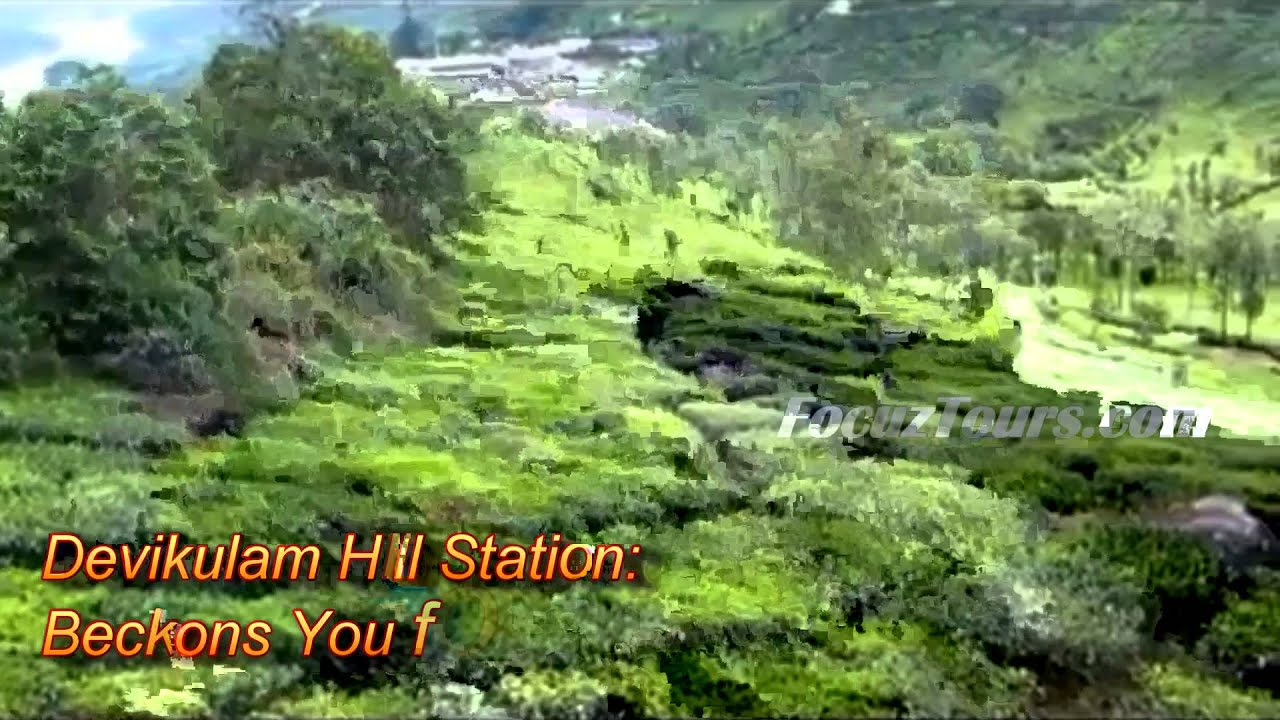 Image Gallery Munnar Attractions