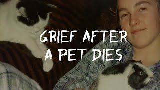 Grief After Losing A Pet,