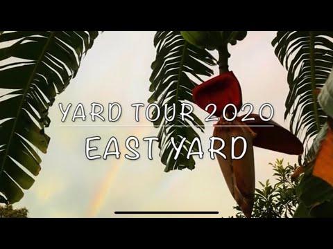 yard-tour-2020---east-side-yard-(part-2-of-3)-florida-tropical-fruit-farm
