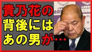 日馬富士による貴ノ岩の怪我から相撲協会・白鵬vs貴乃花に発展した事件...