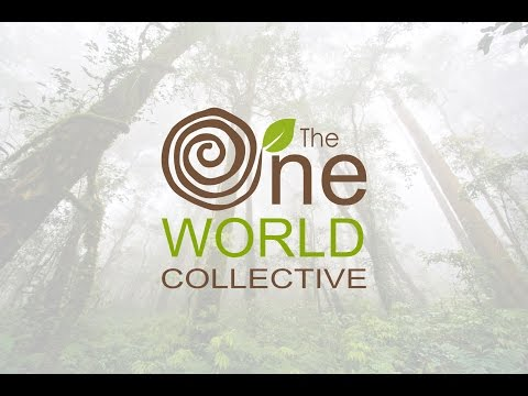 The One World Collective - Non for Profit Organisation