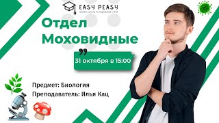 Отдел Моховидные   Илья Кац   Онлайн-школа EASY PEASY   ОГЭ биология