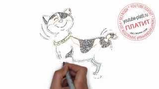 Нарисованные глаза кошки  Как нарисовать красивую черную кошку ребенку карандашом за 19 секунд