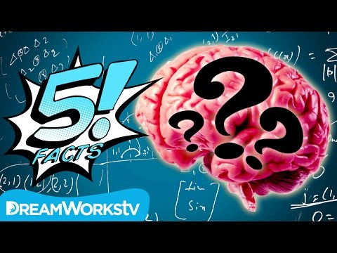 5 Myths About The HUMAN BRAIN Busted! | 5 FACTS