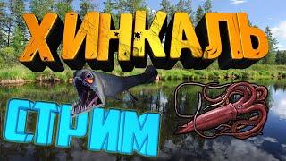 Стрим Русской Рыбалки 3 Оф тур Карпфишинг