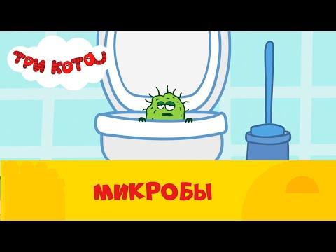 Три кота на СТС Kids | Микробы