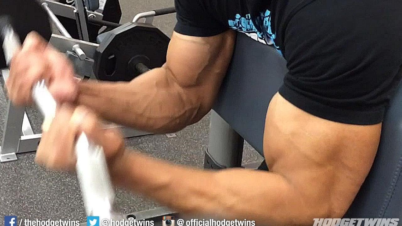 Bicep Exercise For Bigger Bicep Muscles Hodgetwins Youtube