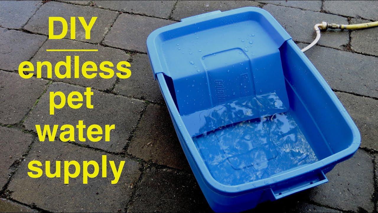 Diy Endless Dog Water Supply Youtube