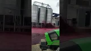 Вино рекой