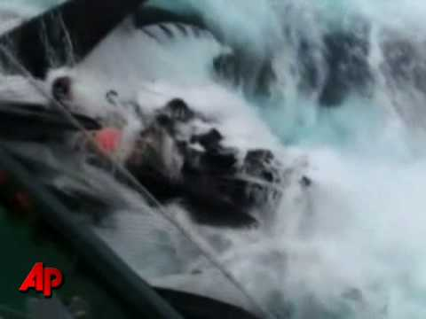 Boats Collide in Anti-whaling Clash in Antarctic