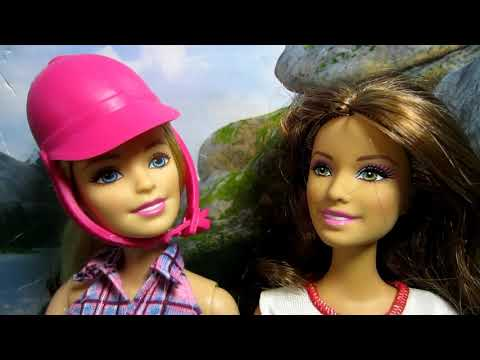 Skateboarding Dog Meets Barbie & Pony At The Park!