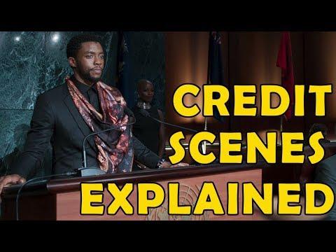 Black Panther End Credits Scenes Explained | Urdu/Hindi