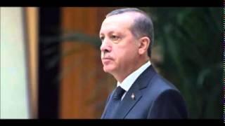 Erdoğan's push for presidential system reveals lust for power