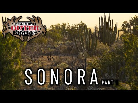 Hunting Mule Deer In Sonora Mexico - Part 1