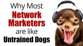 Why Most Network Marketers are Like Untrained Dogs