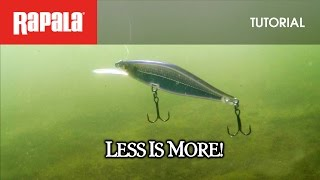 Less is more: The Rapala® Shadow Rap® Shad-HOW TO FISH
