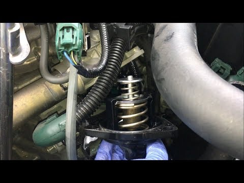 2013-2017 Honda Accord Thermostat Replacement DIY