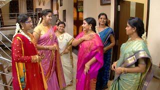 Priyamanaval Episode 245,  09/11/15