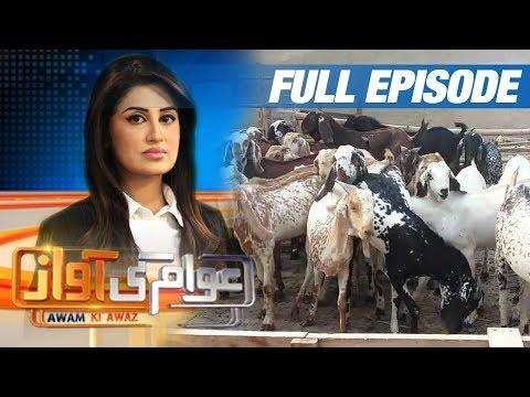 Bakra-Eid Special   Awam Ki Awaz   SAMAA TV   30 Aug 2017