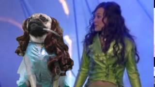 Doug The Pug - Lizzie Mcguire