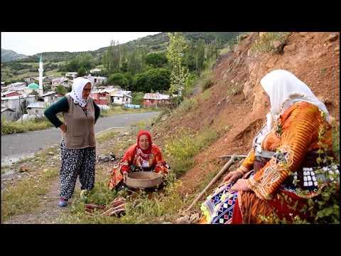 ANADOLU'NUN EMEKÇİ KADINLARI # kayıp #zamanlar # eskiyen Güzellikler  sivas # Hafik  # Köy Türküleri indir
