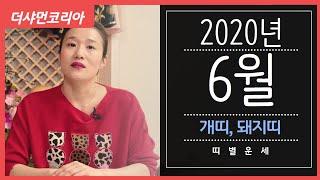 """[용인 연화신당] 2020년 6월 띠별운세 """"개띠,돼지띠""""/ 연화신당 ☎️ 010-5801-3378 ☎️"""