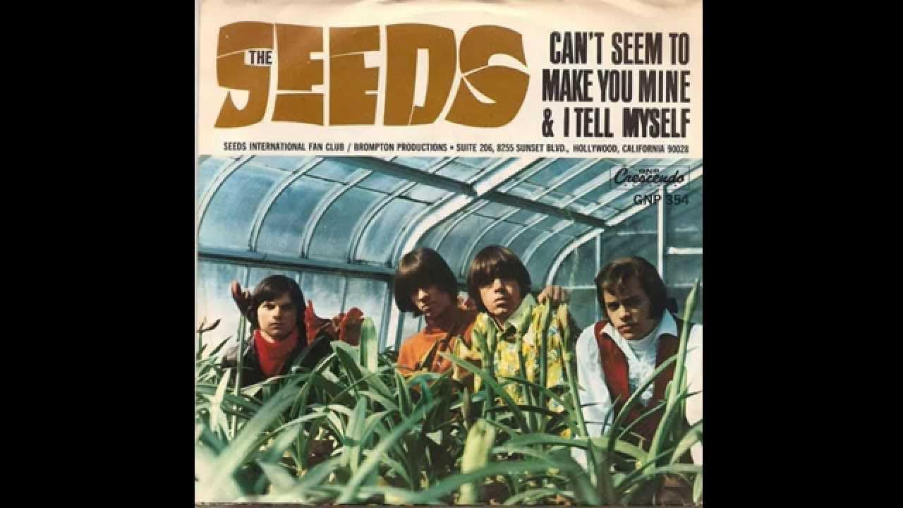 the-seeds-cant-seem-to-make-you-mine-1965-big-joe-portagee