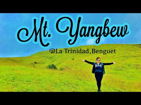 MT YANGBEW | LA TRINIDAD,BENGUET | Pinas Vlogs