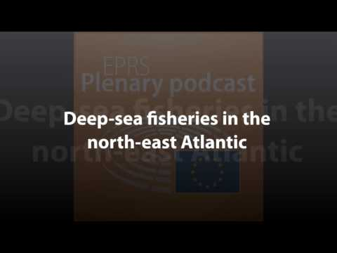 Deep-sea Fisheries In The North-East Atlantic [Plenary Podcast]