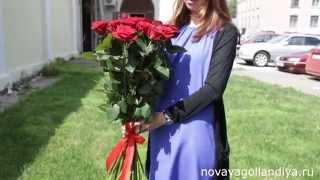 видео Красные розы — купить в Санкт-Петербурге