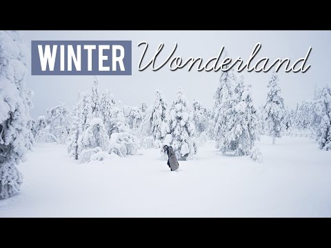 Winter Wonderland - Luosto, Finland [Eurotrip Day 16 of 22]
