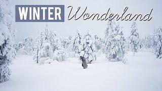 Winter Wonderland - Luosto, Finland