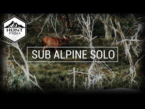 Sambar Backpack Hunting Solo - Alpine National Park