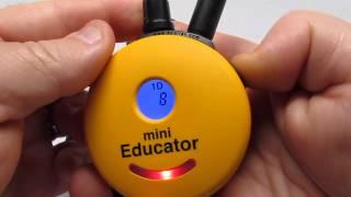 E-collar Technologies Mini Educator (new 2015 Version)