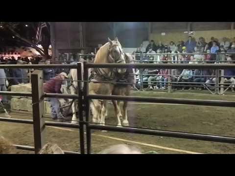 Horse Pull at Tunbridge World's Fair 9/16/16