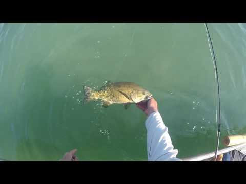 Fly Fishing Top Water Bass lake Erie 2016 with Graham Coombes