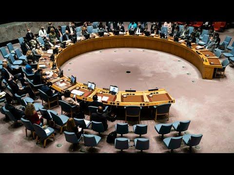 مجلس الأمن يطالب بعودة حكومة يديرها مدنيون • فرانس 24  - نشر قبل 22 دقيقة