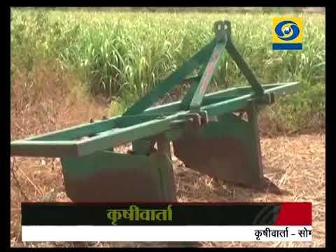 Krishivarta Bajarbhav - 07 June 2018 - कृषीवार्ता बाजारभाव