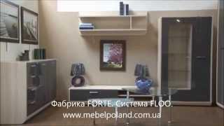 Модульная мебель FlOO. Фабрика Forte (Польша).(Мебель FLOO от польской фабрики ФОРТЕ. http://www.mebelpoland.com.ua/category/mebel-forte-floo/ Выпускается в цветах: корпус -